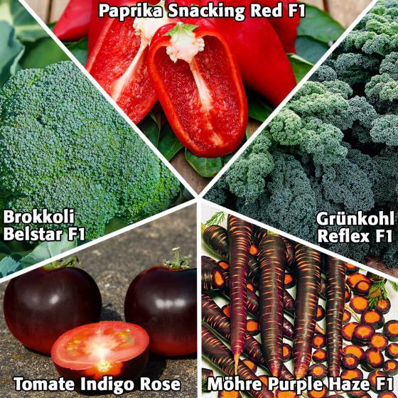 Gemüsesamen Sortiment supergesundes Gartengemüse