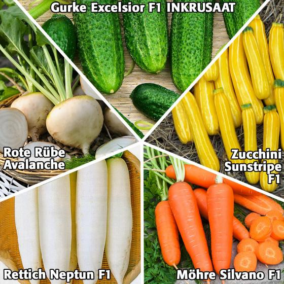 Gemüsesamen Sortiment Extraportion Geschmack