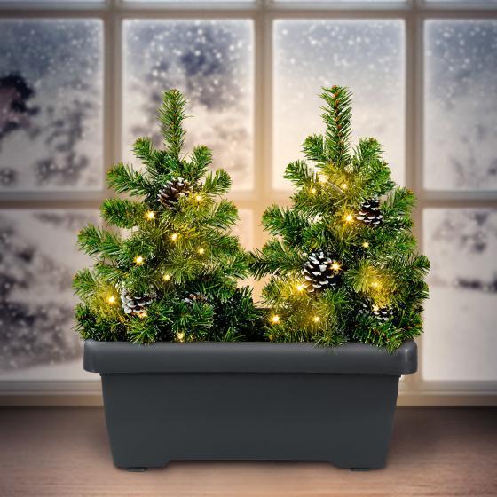 Blumenkasten mit LED-Tannenbäumen