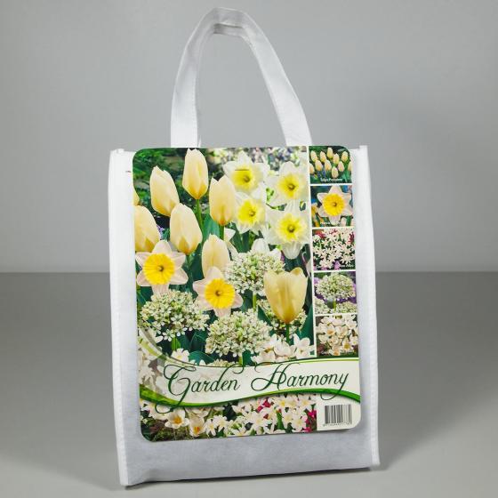 Blumenzwiebel-Sortiment Weißer Frühlingsgarten