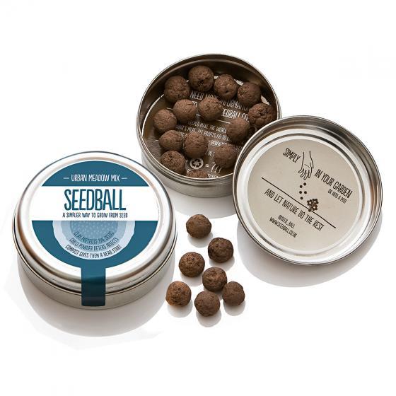 Seedball Bunte Stadt-Wiese, 20 Seedballs