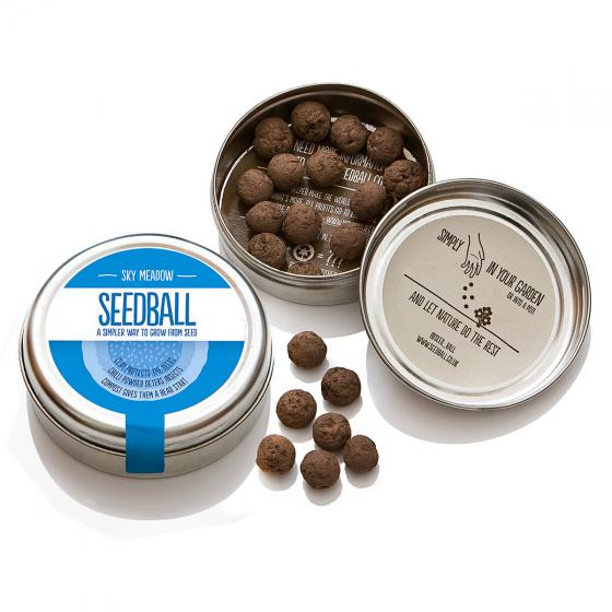 Seedball Blumenwiese in Himmelblau, 20 Seedballs