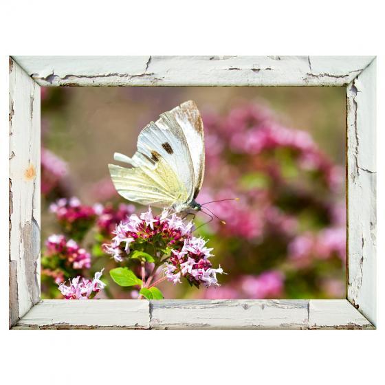 Gartengemälde Schmetterling 79 x 59 cm