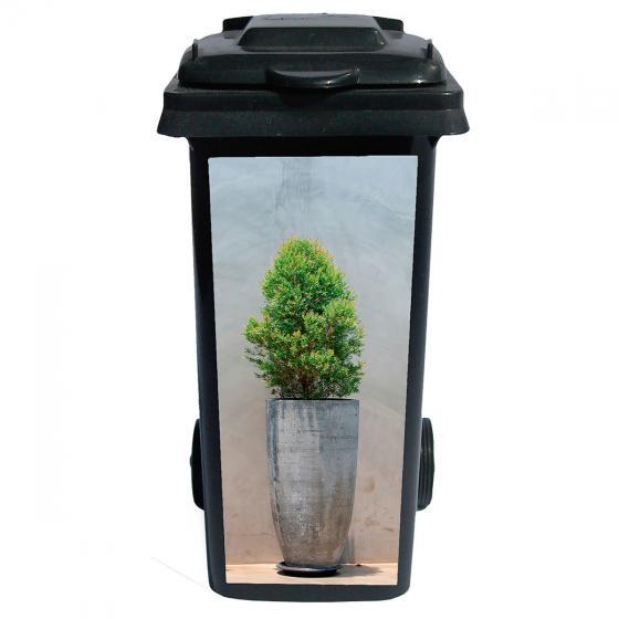 Mülltonnen-Aufkleber Buchsbaum