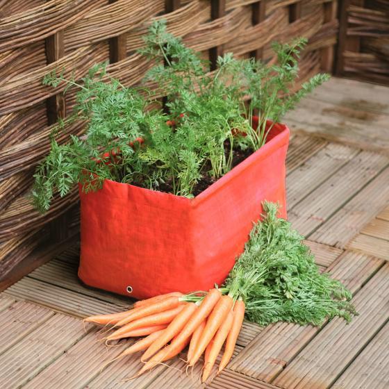 Karotten-Pflanzsack 2er-Set