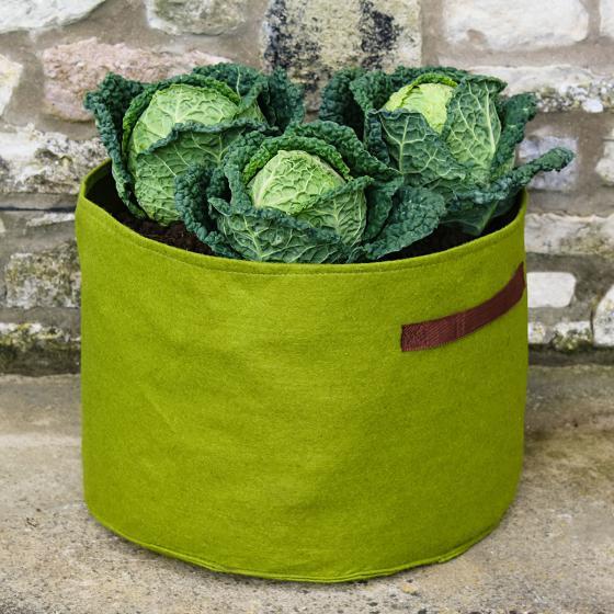 Vigoroot Pflanztasche, Gemüse