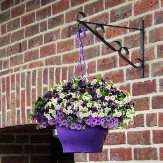 Zauberglöckchen Trixi® Shades of Blue - Blumenampel