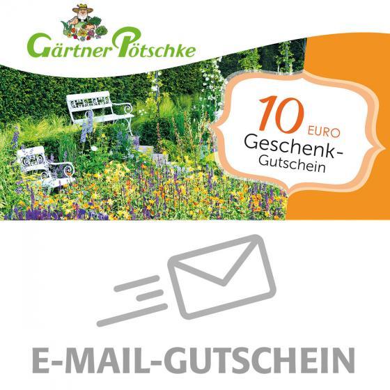 10,- Euro Online-Geschenkgutschein