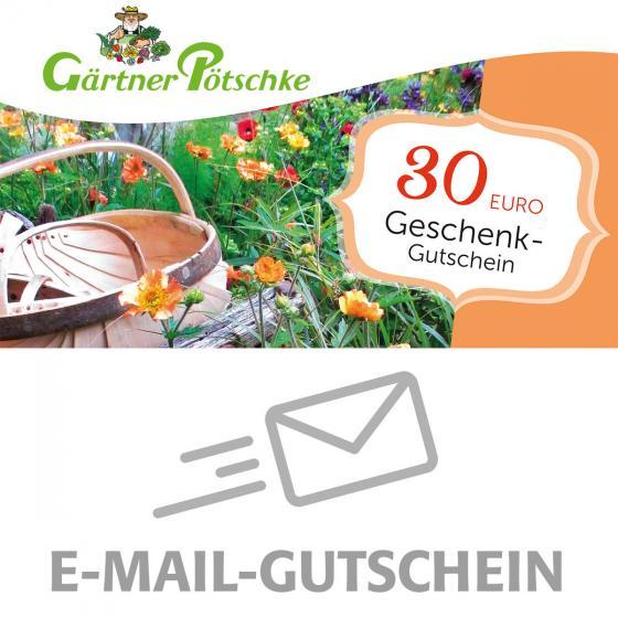 30,- Euro Online-Geschenkgutschein