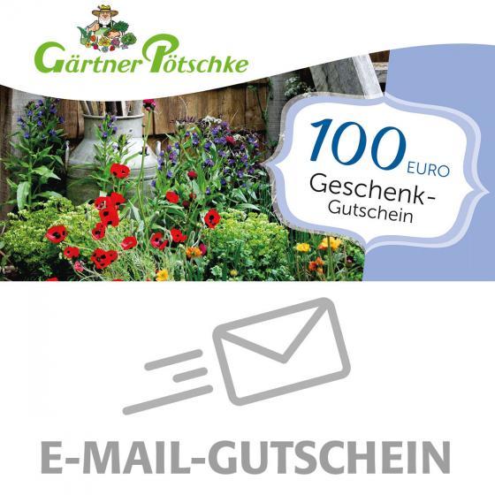 100,- Euro Online-Geschenkgutschein