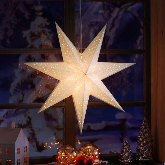 Leuchtstern Winter Star