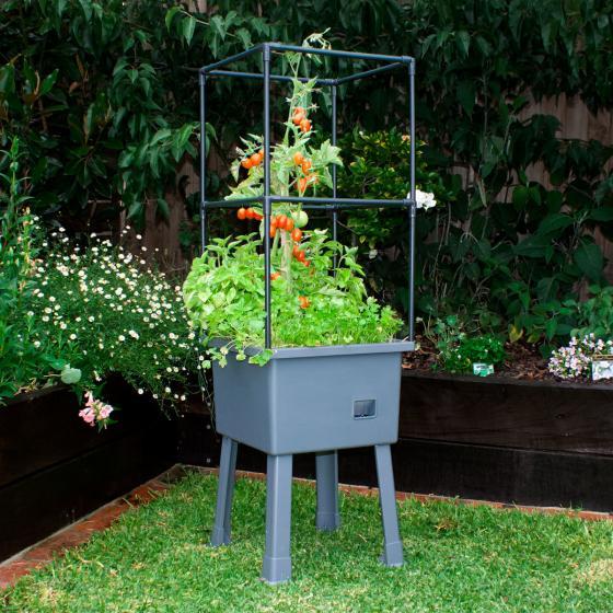 Hochbeetgarten-Komplett-Set, klein