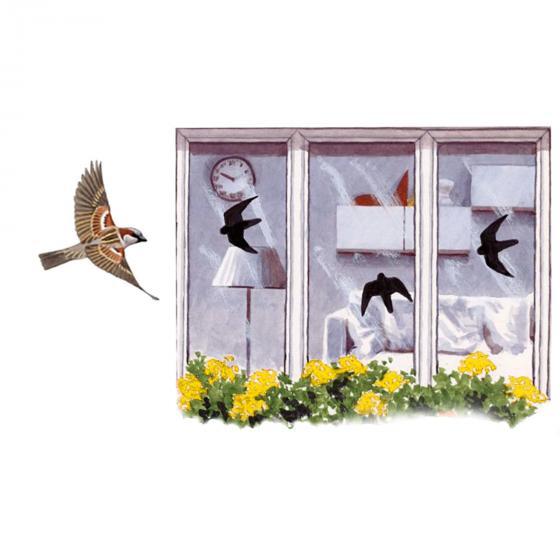 vogel aufkleber f r fensterscheiben online kaufen bei g rtner p tschke. Black Bedroom Furniture Sets. Home Design Ideas