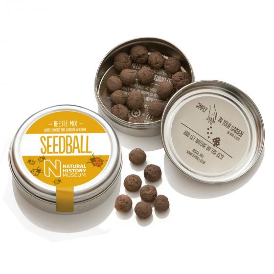 Seedball Marienkäfer-Blumenwiese, 20 Seedballs