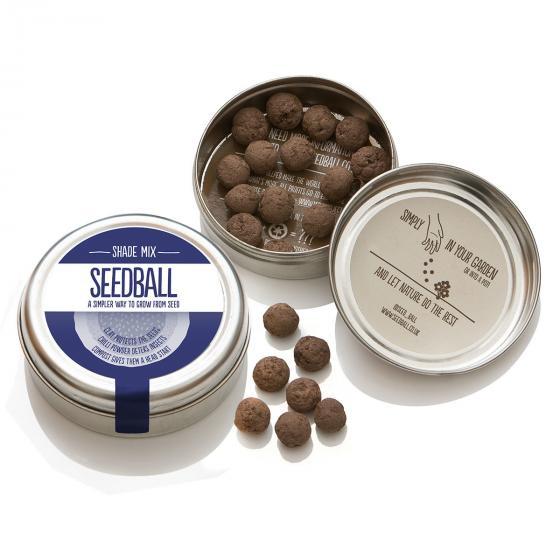 Seedball Blumenwiese für den Schatten, 20 Seedballs