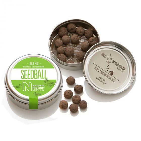 Seedball Vogelfutter-Blumenwiese, 20 Seedballs