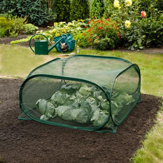 Pop-Up Frucht-Schutz-Käfig, PE-Netz, grün, 100x100x49 cm