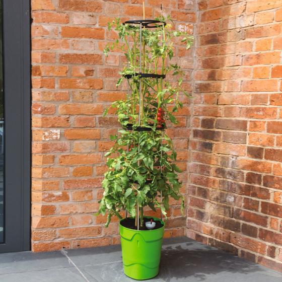 Tomaten-Pflanzturm Grow Tower, Durchmesser 28 cm, H 32 cm, Stütze 120 cm, grün
