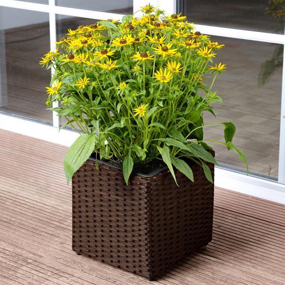 Outdoor-Rattan-Pflanzkübel mit Bewasserungssystem, quadratisch, 28x28x28 cm, kaffee braun