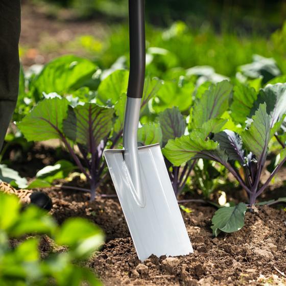 Garten Spaten AS-D