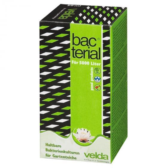 Bacterial, 50 ml