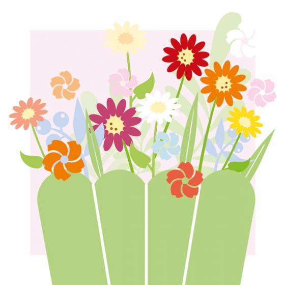 Sommerblumen-Sortiment Bunter Kasten, 6 Pflanzen