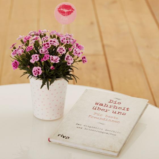 """Nelke Pink Kisses® Friendset 3  """"Unsere Geschichte"""" mit Ausfüllbuch für Freundinnen"""