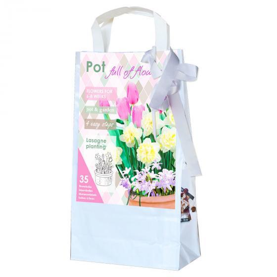 Blumenzwiebel-Sortiment  Pink/Rosa Topf