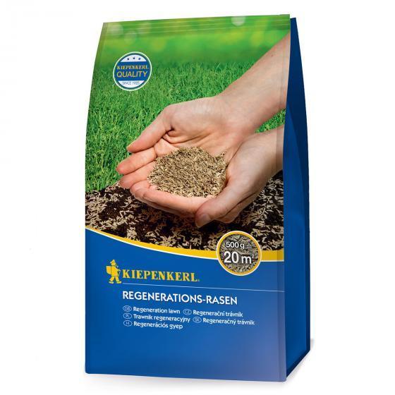 Regenerations-Rasen, 500 g