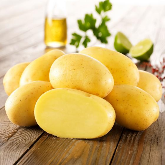 Kiepenkerl Kartoffel Jelly, 10 Stück