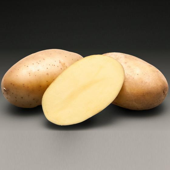 Kartoffel Aromata 5 kg