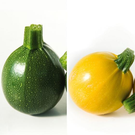 Trendiges Zucchini-Duo