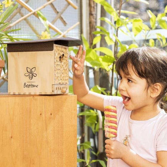 Insektenhotel BeeHome Observer mit Gutschein für Mauerbienenkokons