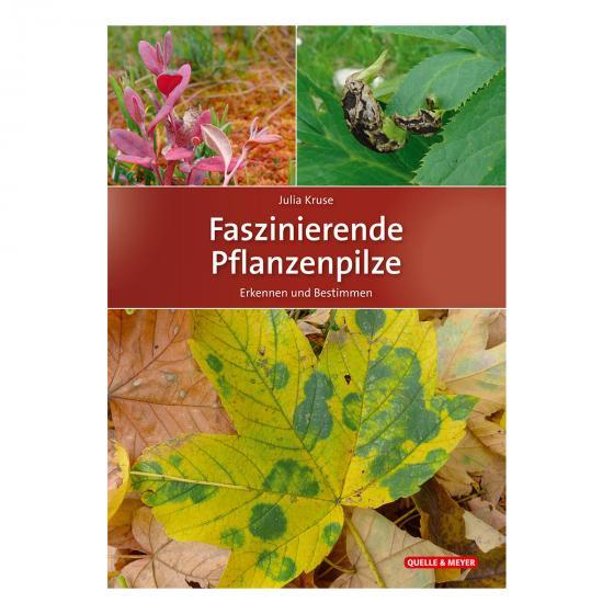 Faszinierende Pflanzenpilze Erkennen und Bestimmen