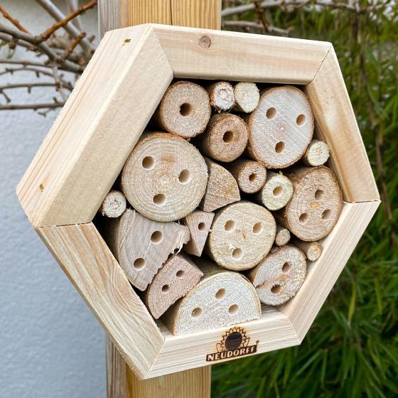 Insektenwabe Mauerbienen