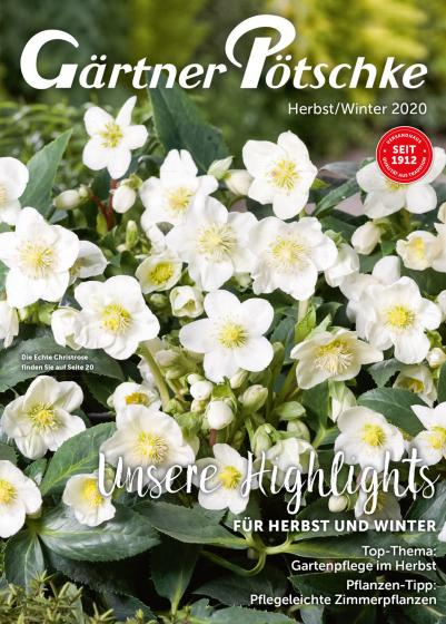 Herbst-Winter-Katalog 2020