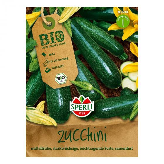 BIO Zucchinisamen Black Beauty