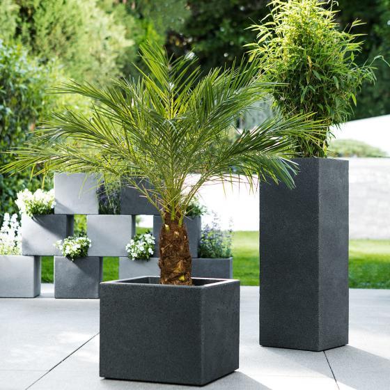 Pflanzkübel Long Cube, 60cm, Schwarz