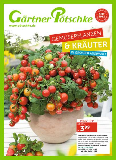 Gemüsepflanzen & Kräuter