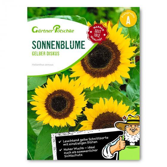 Sonnenblumensamen Gelber Diskus