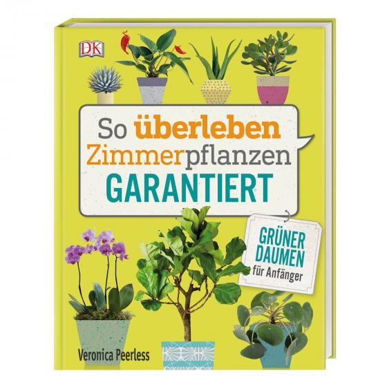 So überleben Zimmerpflanzen garantiert