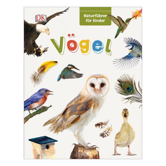 Naturführer für Kinder - Vögel