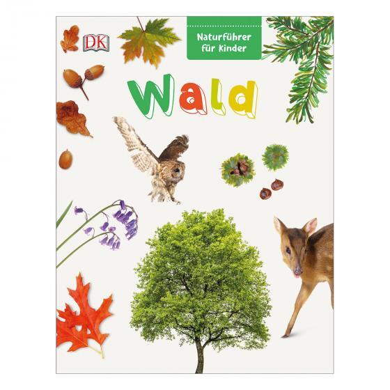Naturführer für Kinder - Wald