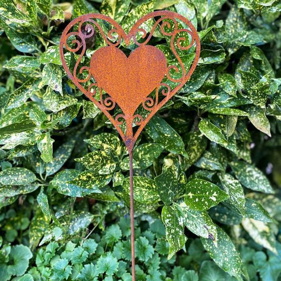 Gartenstecker Herzblatt , Edelrost, 77 cm