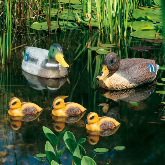 Set Teichfiguren Stockenten-Familie, schwimmend, 5-teilig