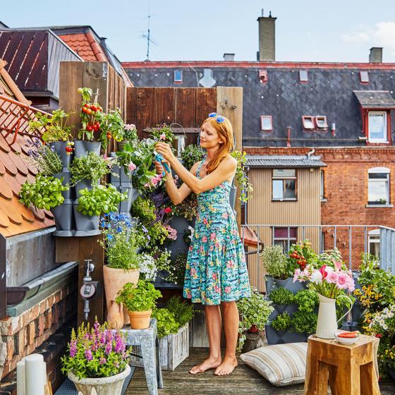 NatureUp! Set Vertikal mit Bewässerung