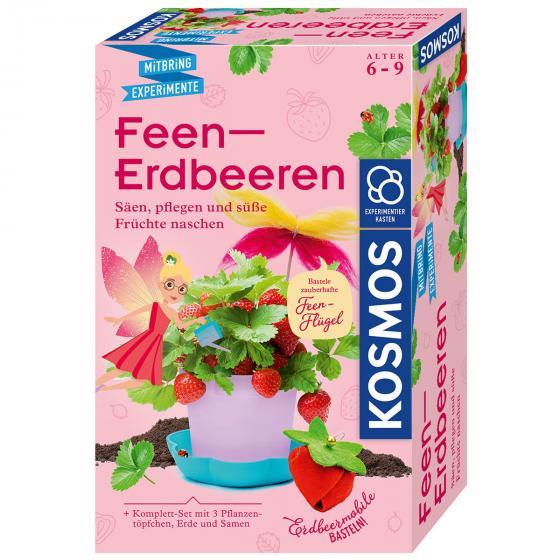 Feen-Erdbeeren, Experimentierkasten