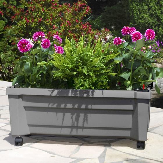 Pflanzkasten mit Bewässerungssystem, grau