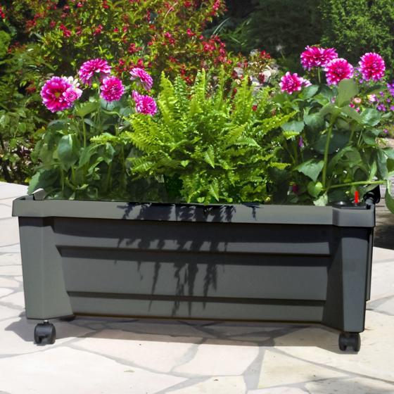 Pflanzkasten mit Bewässerungssystem und modularem Spaliere, anthrazit