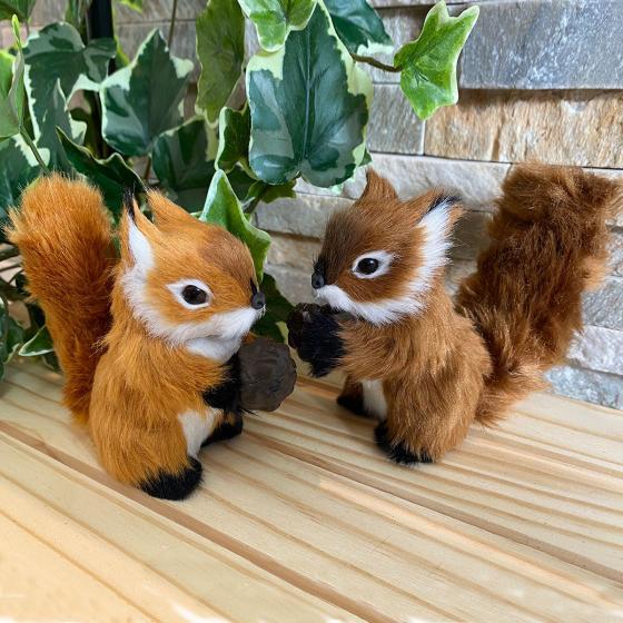 Eichhörnchen-Set mit Nuss